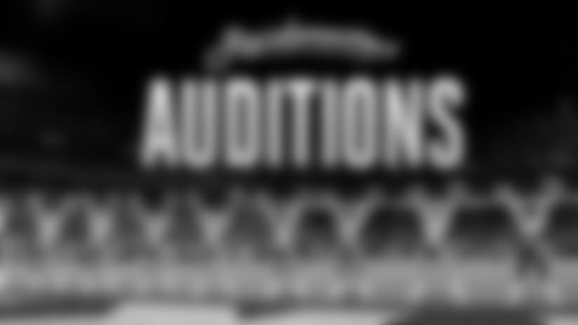 17_auditions_article_divider.jpg