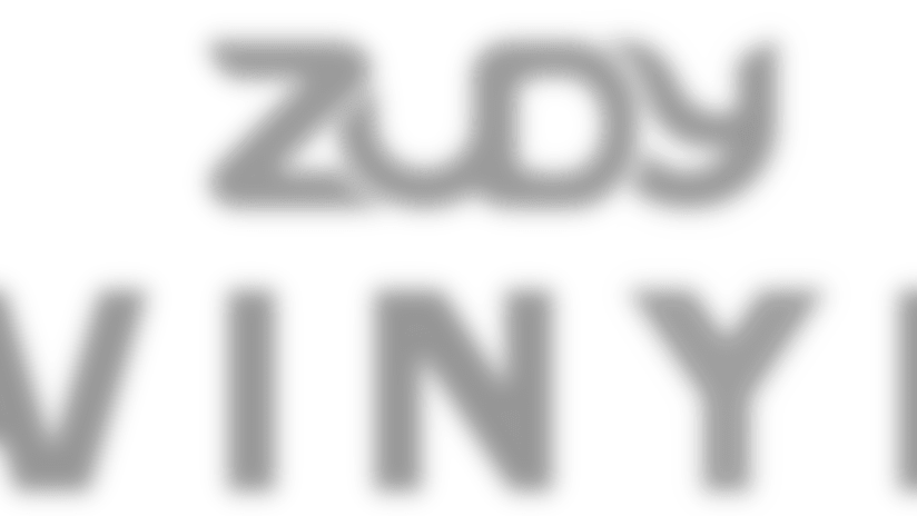 300-tt-zudyvinyl-logogs.png