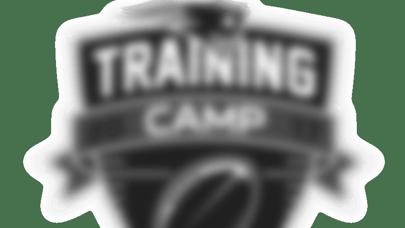 2017-training-camp-logo.png