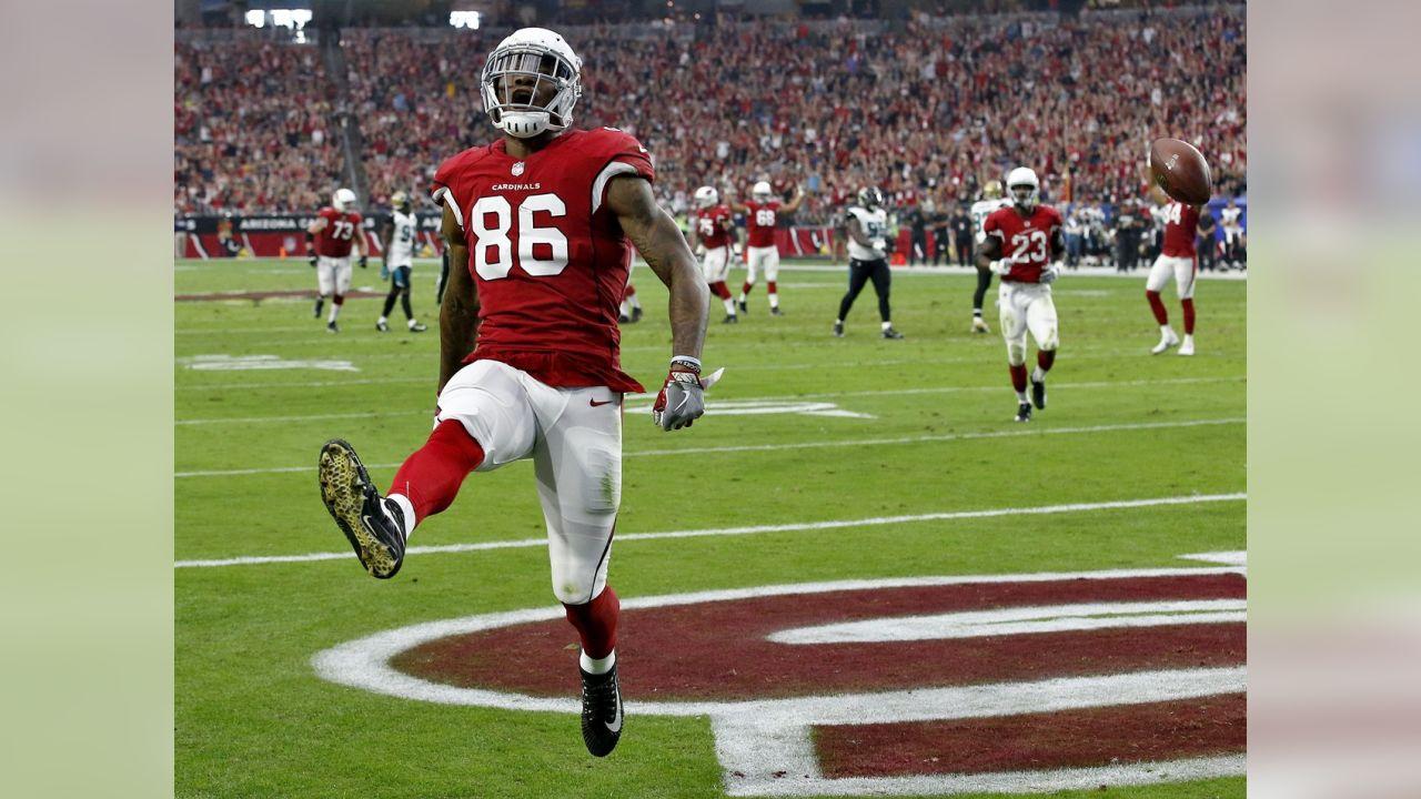 TE Ricky Seals-Jones celebrates a touchdown
