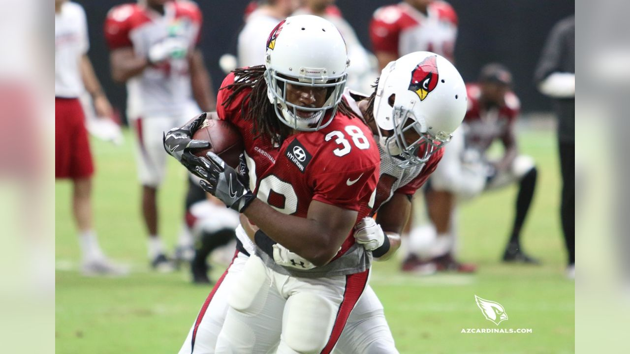 RB Andre Ellington is wrapped up by S Harlan Miller