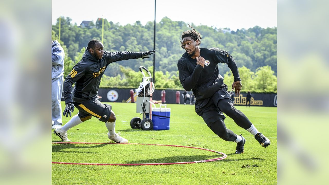 Bud Dupree and Vince Williams
