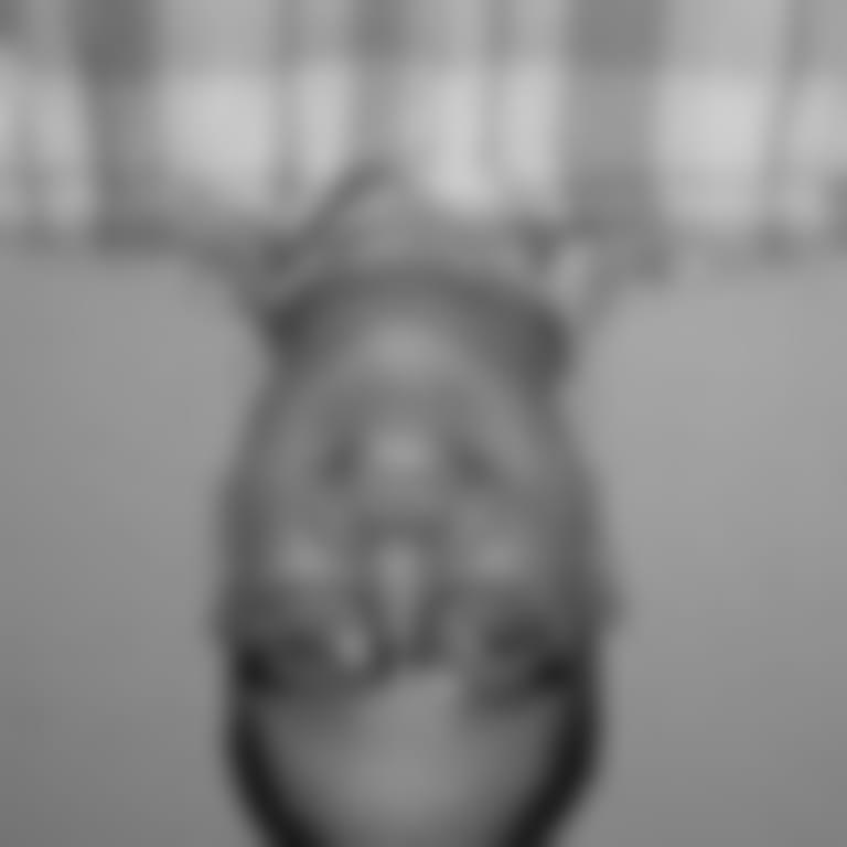 Headshot picture of Traduccion Gabriel Trujillo voz oficial en espanol