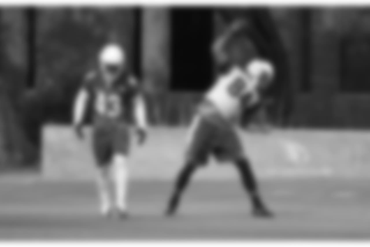TE Jermaine Gresham celebrates a touchdown