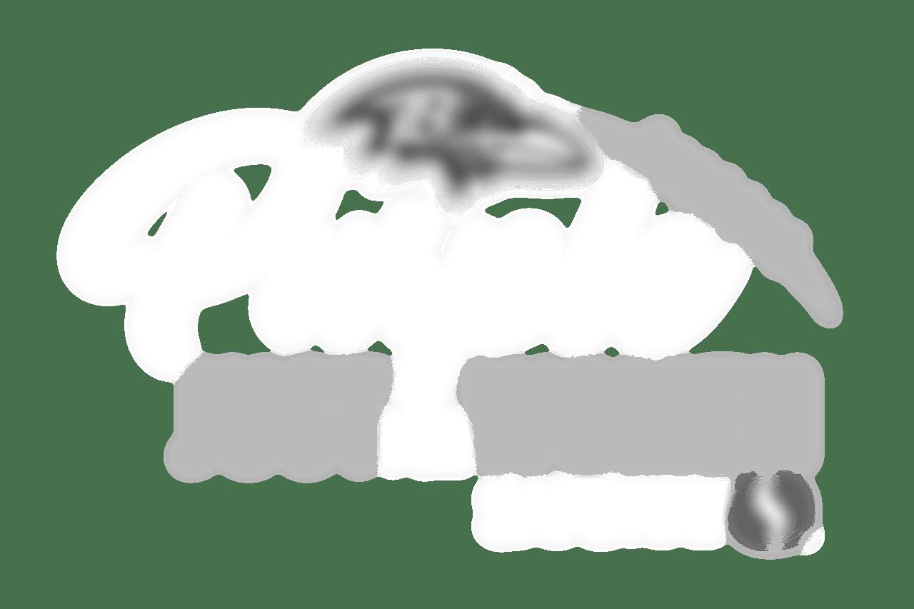 PurpleLogoREV_16x9