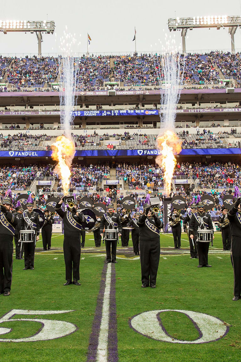 Image result for baltimore's marching ravens images