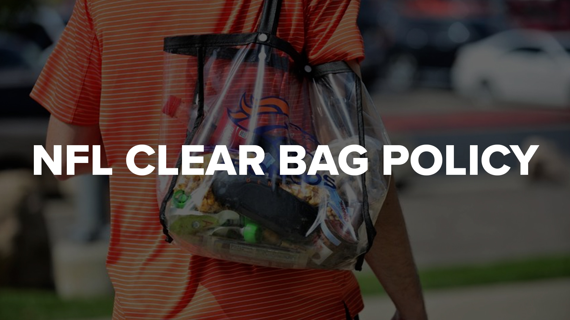 NFL Clear Bag Policy