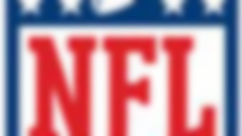 NFL-Shield-65x90-130902.jpg