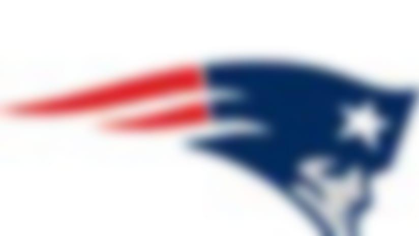 Patriots-130220-IL.jpg
