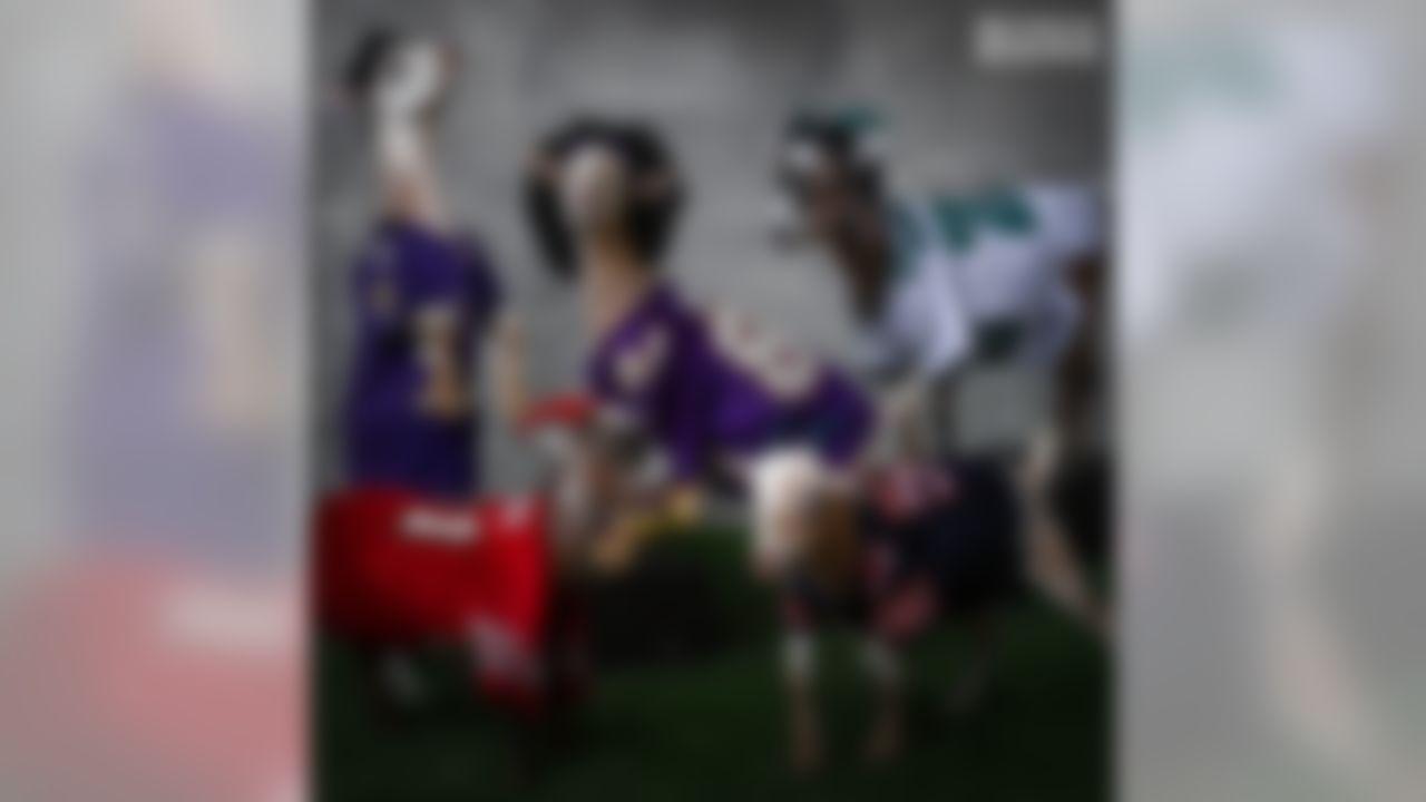 NFL goats