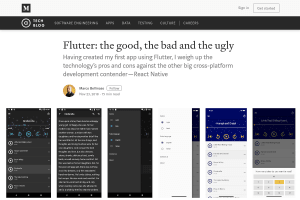 screenshot of Flutter: the good, the bad and the ugly