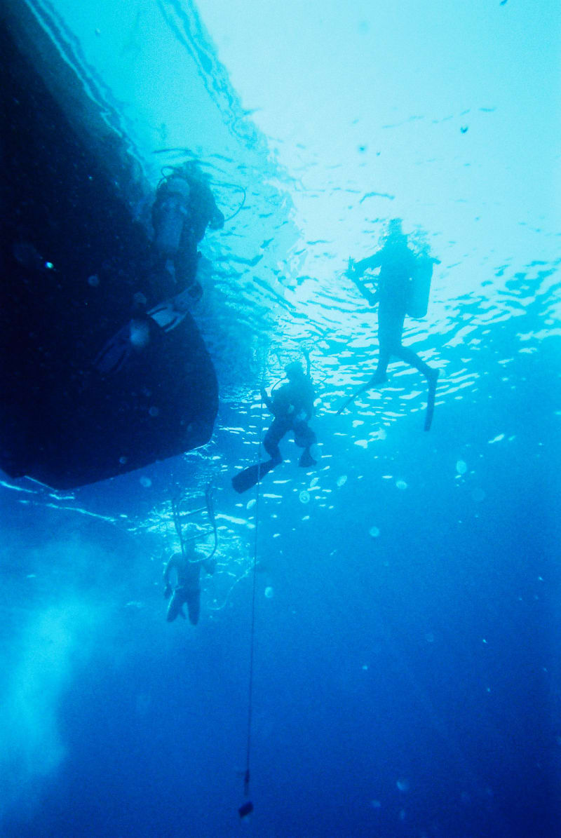 A group of divers in th sea under a boat