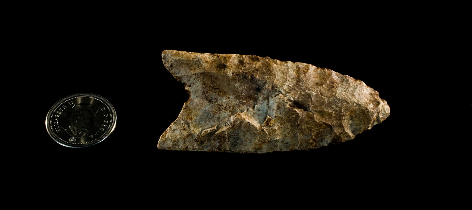 Early Paleo Projectile Point