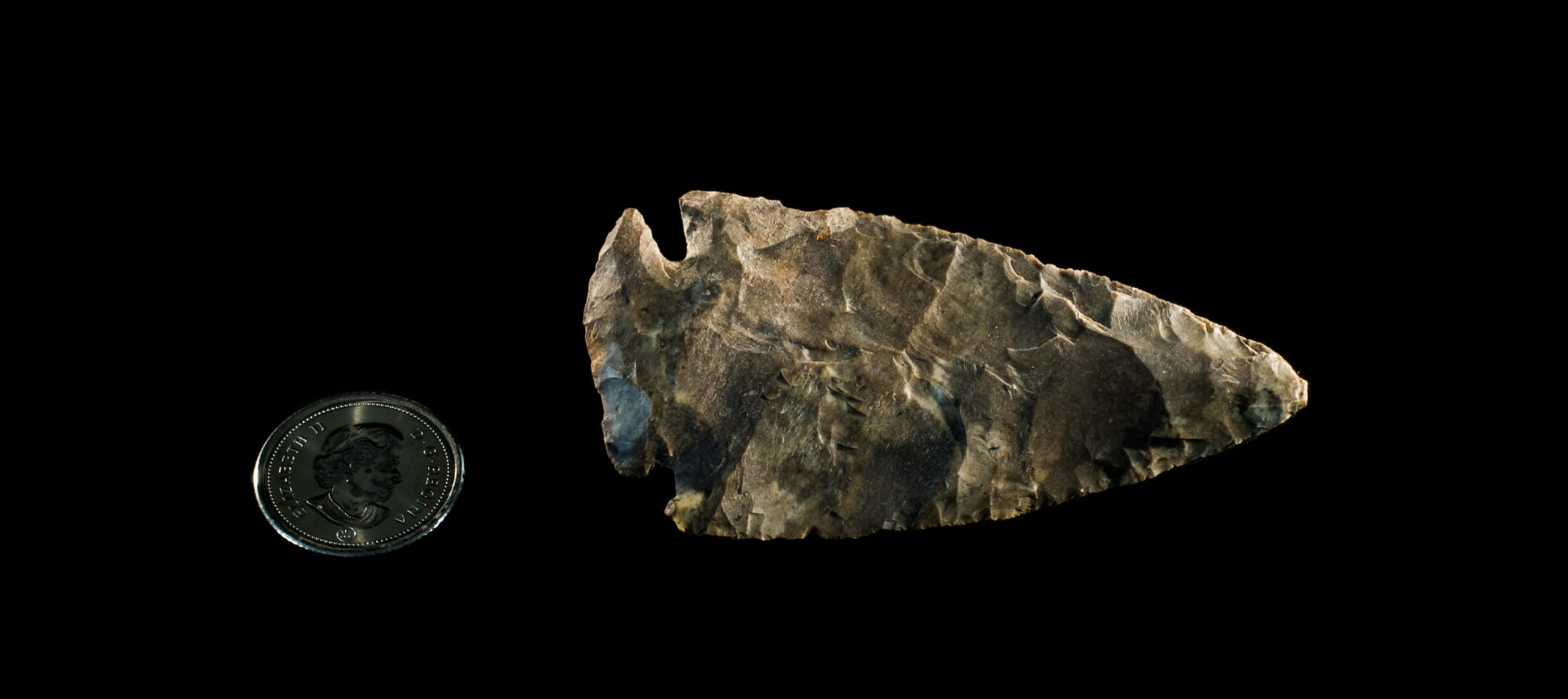 Late Archaic projectile point