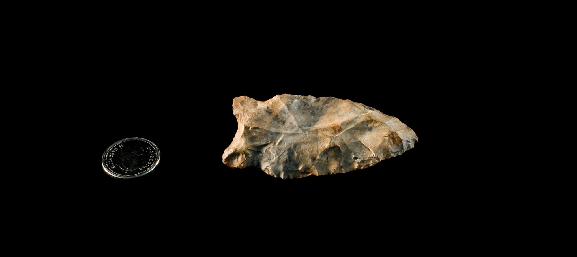 Late Paleo projectile point
