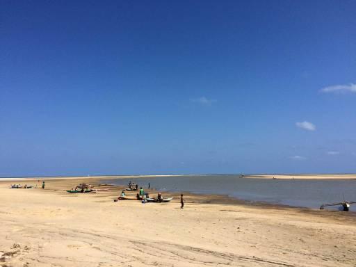 an expansive beach with a clear sky