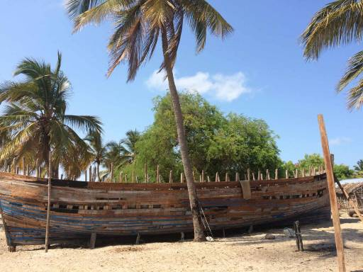 The skeleton of a huge wooden boat under construction, on the beach
