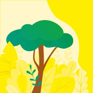 Die Spielkarten von Unverschämt sind mit ökologischen Papier produziert