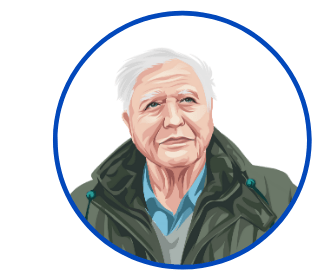 David Attenborough Round