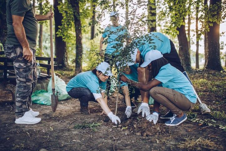 student planting trees