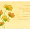 Cosmos Save the Date: Apricot