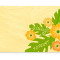 Hibiscus Place Card: Apricot