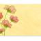 Cosmos Place Card: Blossom