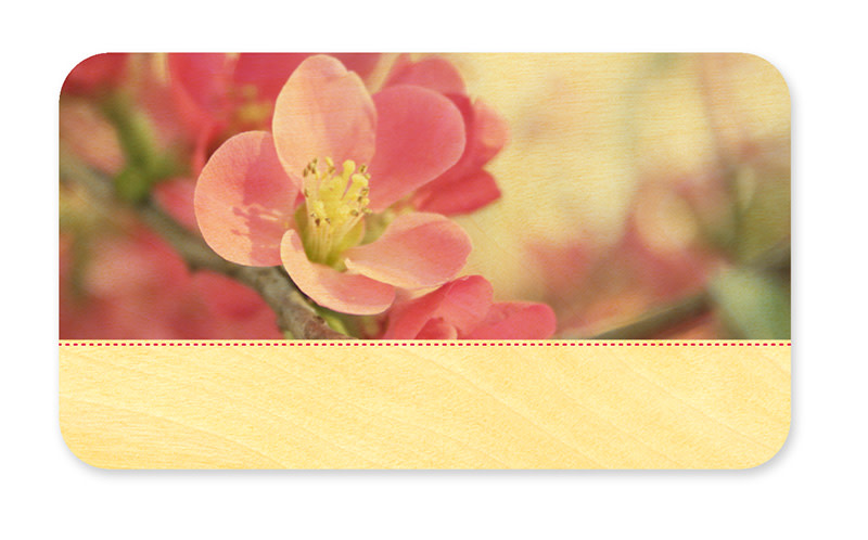 Flowering Quince Place Card