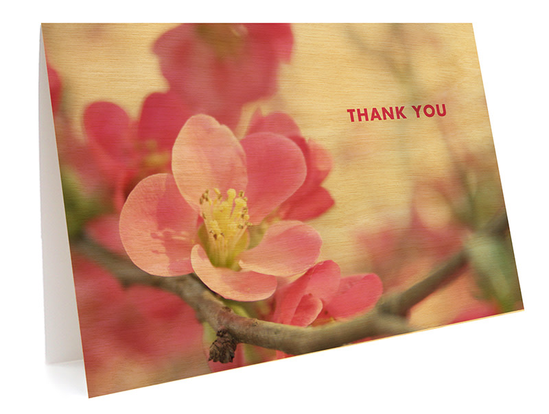 Flowering Quince Folded Thank You Card