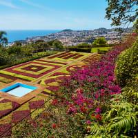 Farverige Madeira