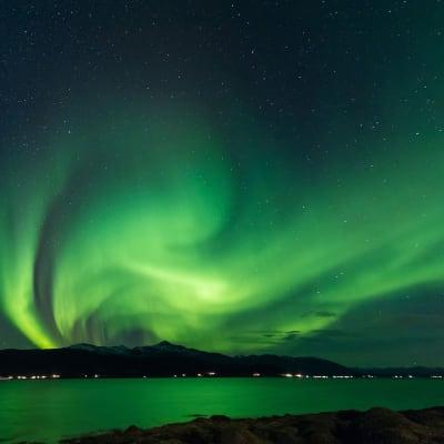 Svalbard - en af verdens sidste vildmarker