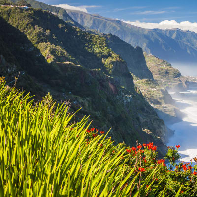 Madeira - Paradisets have