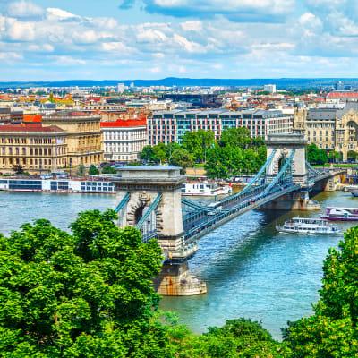 Donau i det nye Europa