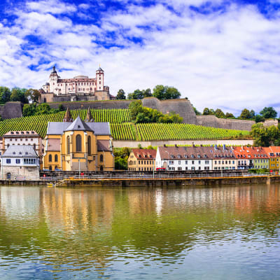 Rhinen-Main-Donau flodkrydstogt