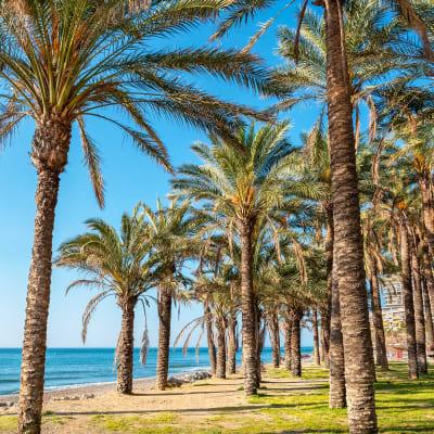 Costa del Sol – Sydspanien