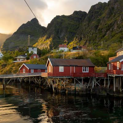 Nordkap – Lofoten Bus-Fly