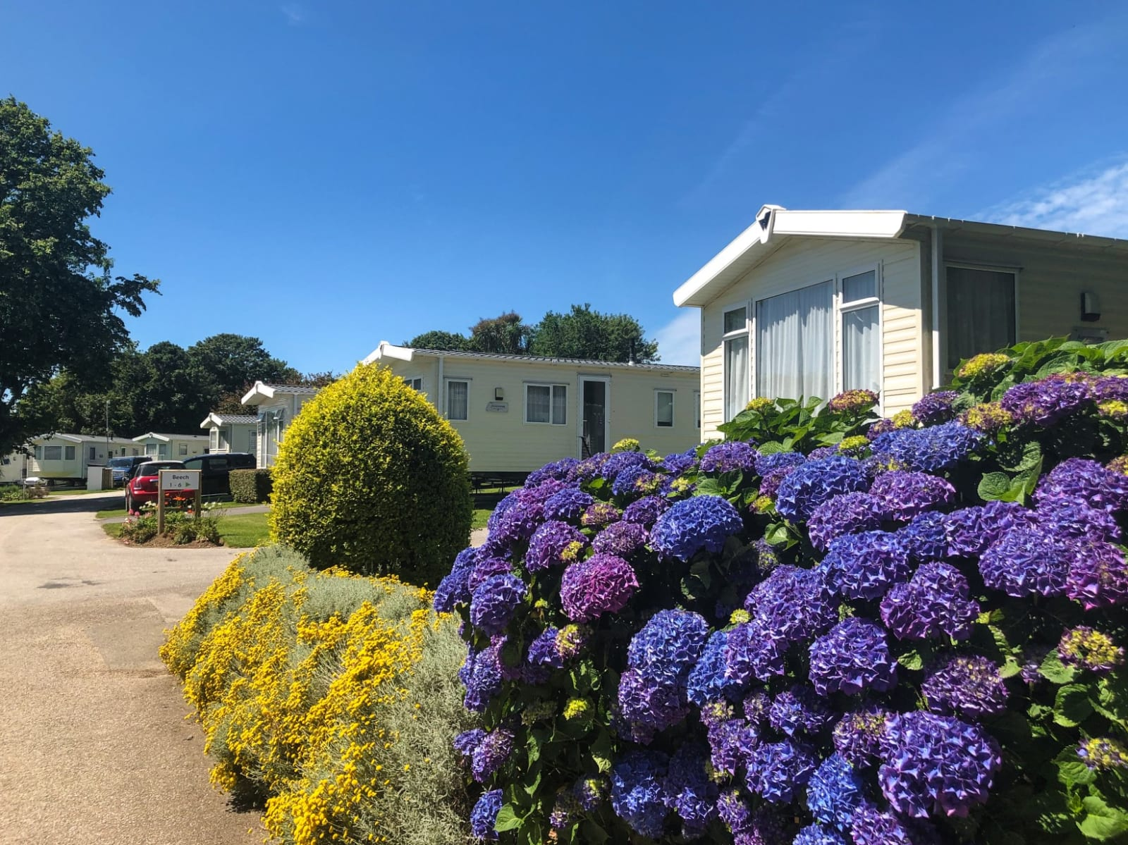 picture of Hendra Holiday Park caravans