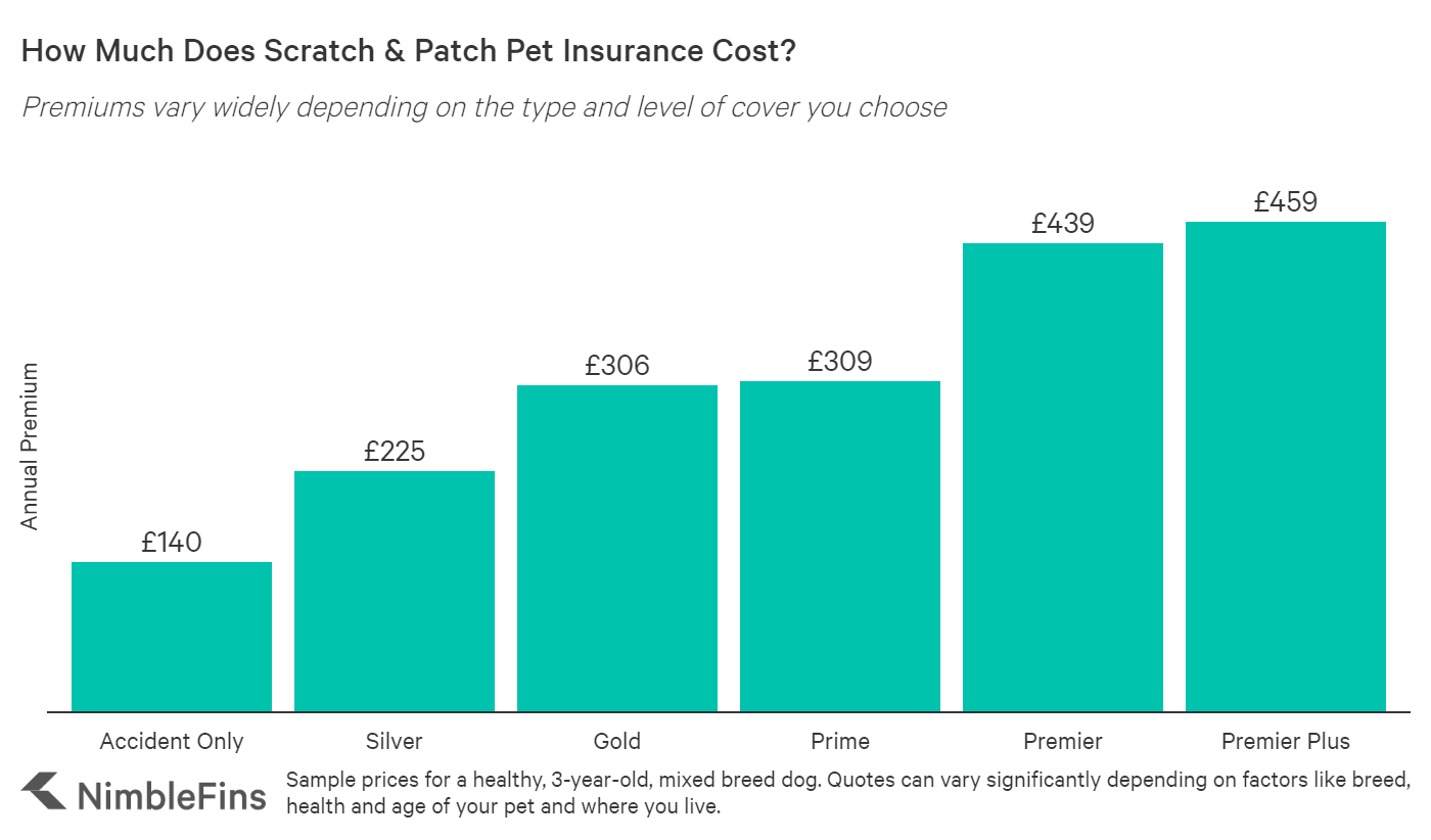 Scratch & Patch Pet Insurance Review: Good Value for You ...