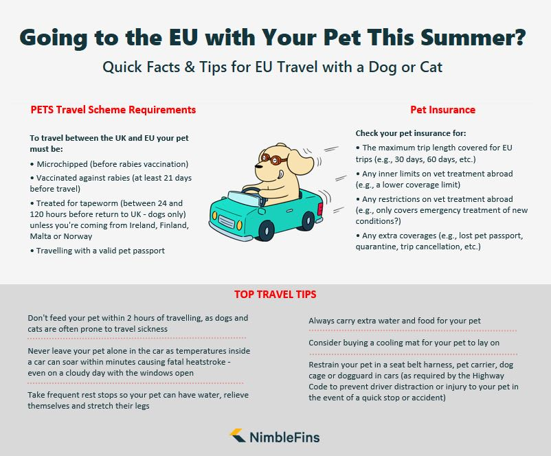 Infographic showing tips for travelling to EU on Roadtrip with Dog or Cat