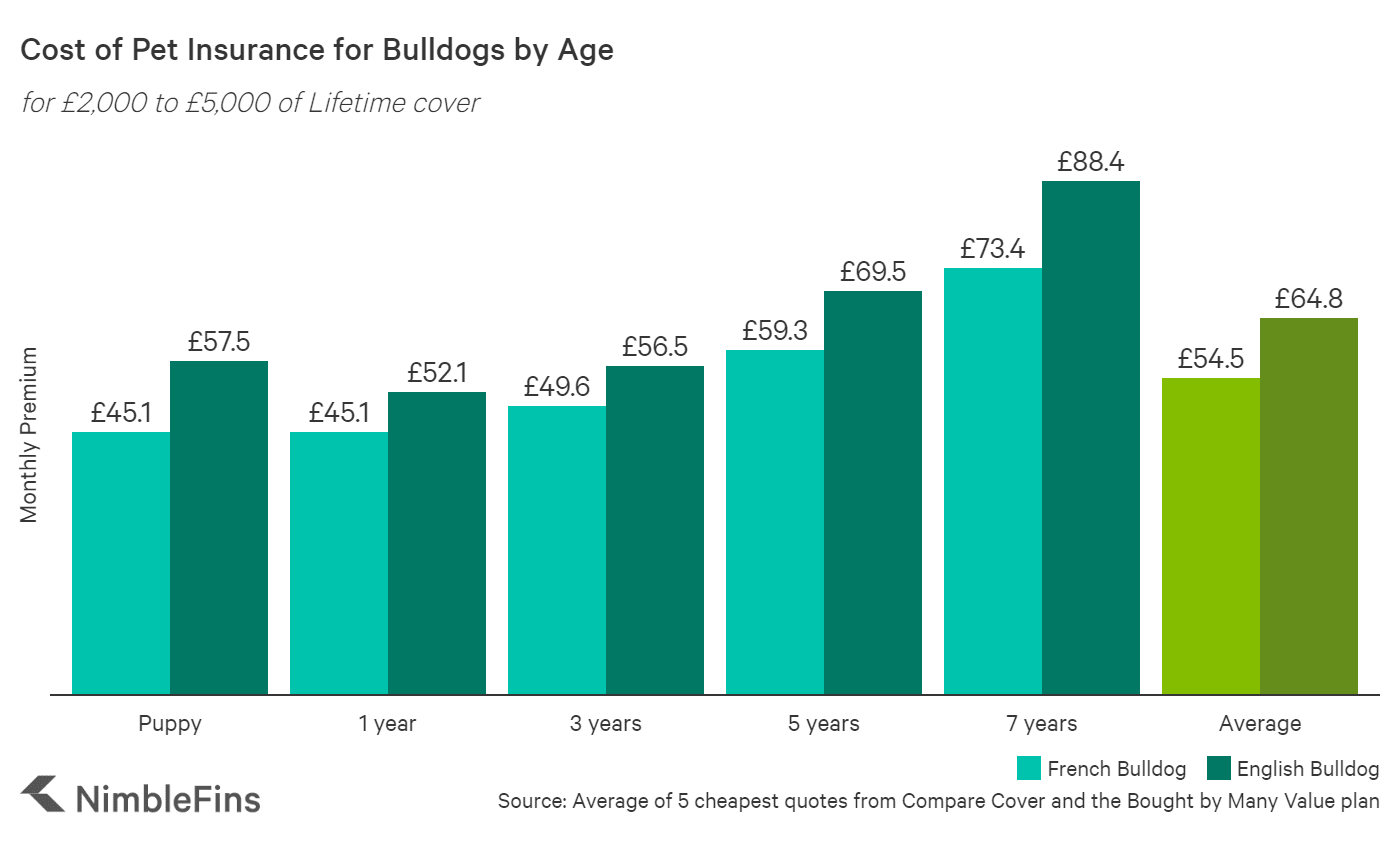 Chart showing the average cost of Bulldog insurance by age