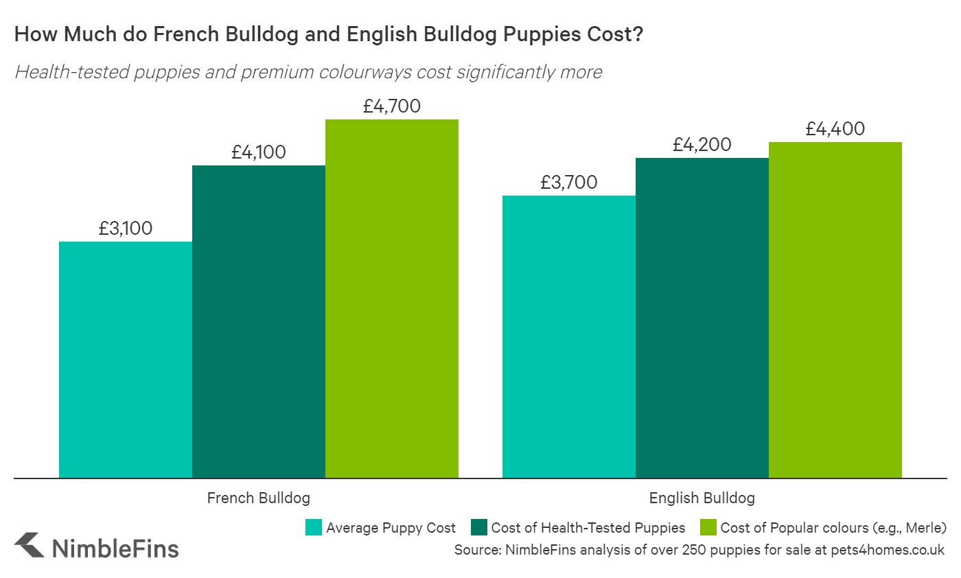 Chart showing the average cost of French and English Bulldog puppies