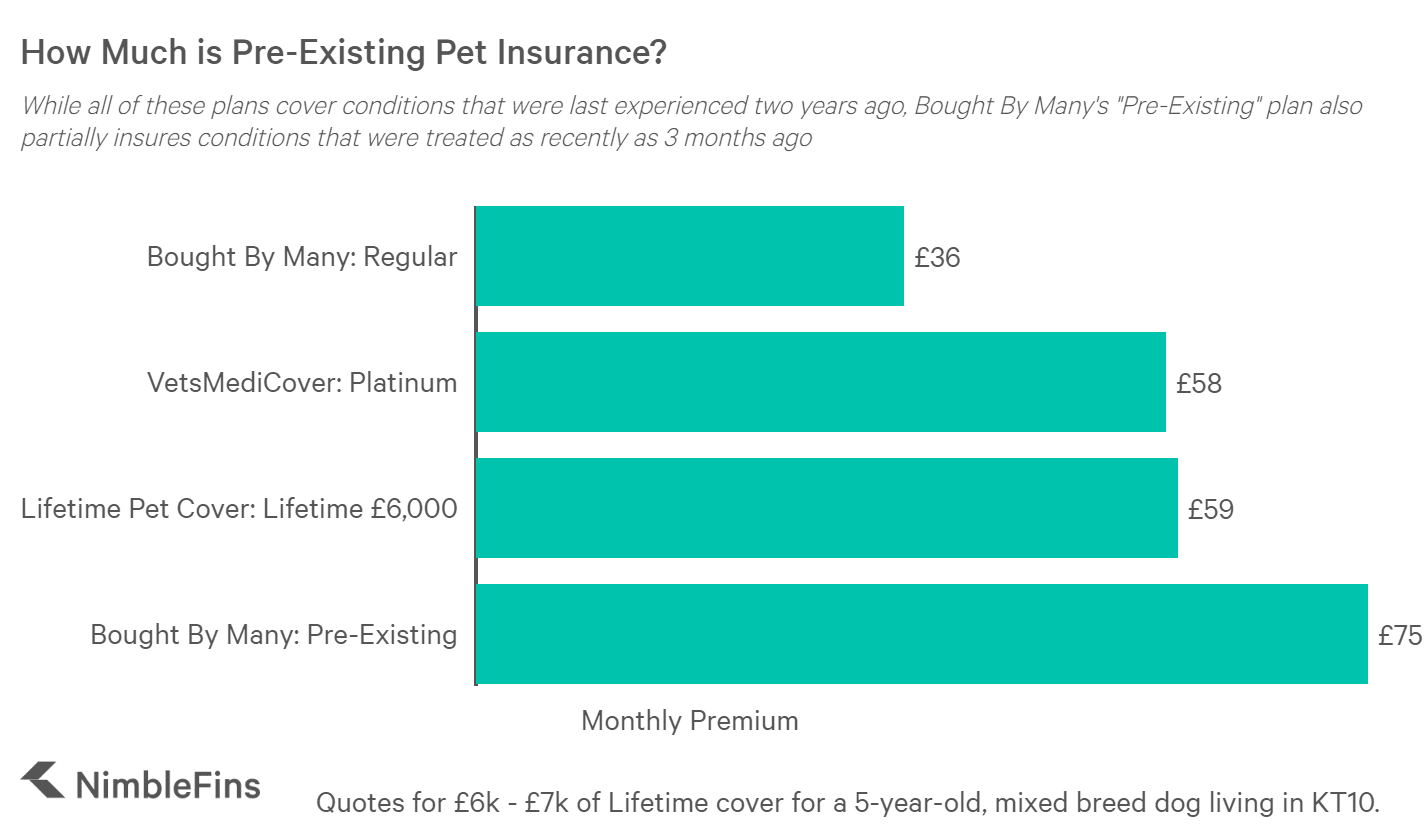 chart comparing pet insurance for pre-existing conditions