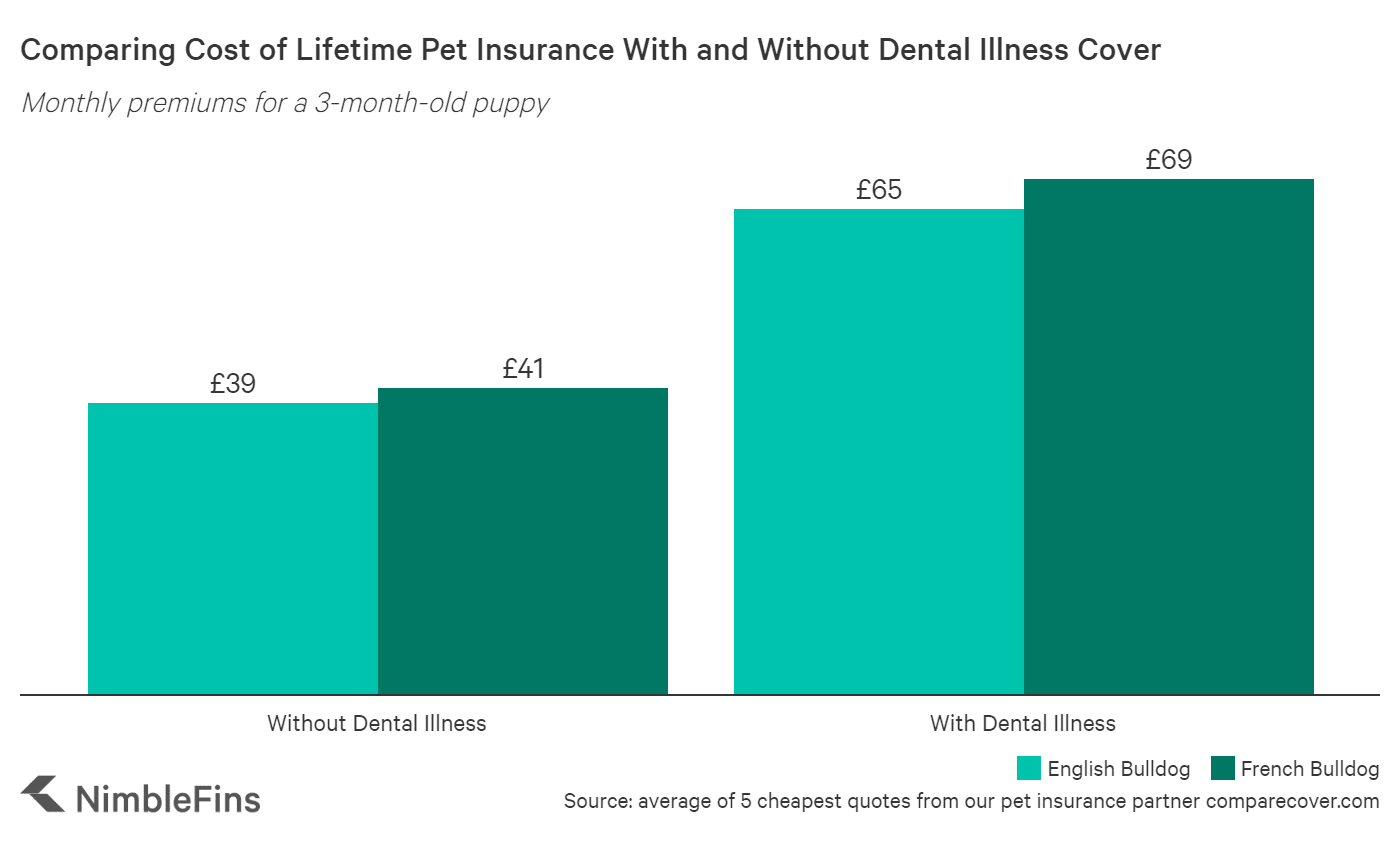 chart showing costs of french bulldog insurance with and without dental illness cover