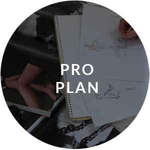 Pro Plan Photo