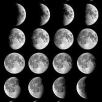 Lunar, Rosina Mae