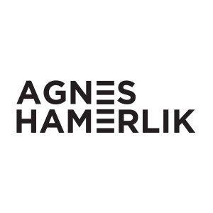 Nineteenth Amendment, Agnes Hamerlik
