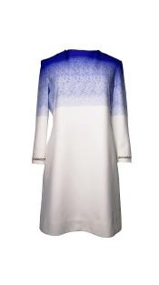 Nineteenth Amendment, Chanho Jang, Modern baroque RTW Part 2, Blue Print Silk Dress, DRESS