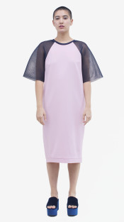 Nineteenth Amendment, Allergic, Parallel of Latitude, Walter Dress in Pink, DRESS