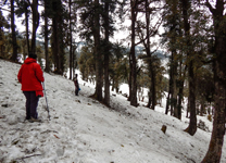 kedarnath-trekking-imgggg