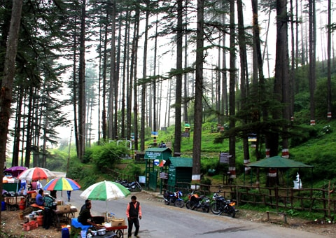 DHANAULTI-TOUR-PACKAGE